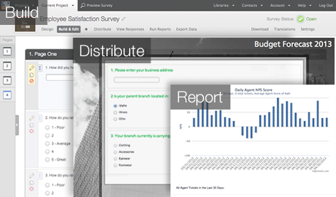 Expert Survey Management. Full survey builds maintenance reports and branding.